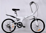 Type neuf pliant MTB avec le vélo de 20 pouces