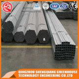 China-Stahlrahmen-Polycarbonat-Blatt-Gewächshaus
