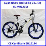 Bafang東欧の市場のための後部モーター36V 250W最もよい選択のMTB様式の電気バイク