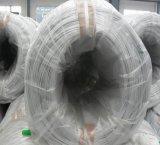 Fil d'acier ovale galvanisé à haut carbone