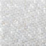 Плитка мозаики прямоугольника стороны свода пресноводной раковины чисто белая
