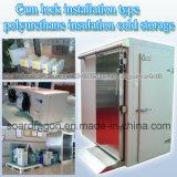 Tipo conservación en cámara frigorífica de la instalación del bloqueo de la leva del aislante del poliuretano