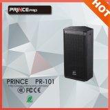 De PRO Audio500W Enige Spreker van de PA 10inch
