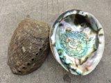 Мексиканское сырье раковины Abalone