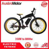 500W 1000W 3000W 6000W fettes Fahrrad Ebike Wheelset elektrisches Fatbike Wheelset