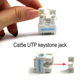 Commercio all'ingrosso trapezoidale della fabbrica del fermaglio di CAT6 /Cat5e UTP RJ45 Jack
