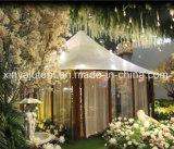 Grandes tentes d'abri ignifuges de jardin d'événement de PVC pour camper