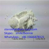 체중 감소를 승진시키기를 위한 강력한 스테로이드 7 Keto Dehydroepiandrosterone