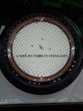 Indicatore luminoso esterno di alto potere del LED con il driver di Meanwell ed il chip di Philips LED
