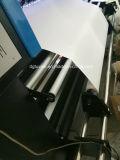 impressora do solvente de Eco da bandeira do cabo flexível do grande formato 1440dpi de 3.2m