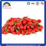 Lycium Barbarum L. Goji Berry Extract 10-50% Polissacarídeos