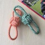 줄무늬 면 밧줄 슬리퍼 독투스 청소 장난감