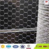 Acoplamiento de alambre hexagonal galvanizado de la fábrica del AMI de Anping Tian