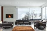 Heißes verkaufendes oberstes ledernes Sofa (SBO-3946)