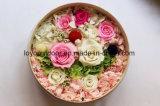 As flores de seda preservaram rosas naturais