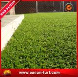 Stuoia artificiale dell'erba del fornitore professionale per la decorazione del giardino