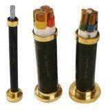 Câble d'alimentation isolé 3X10mm2 et de mise en gaine de PVC de cuivre de conducteur