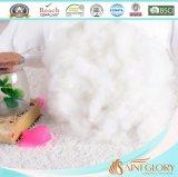 Pouce blanc bon marché en gros de la garniture intérieure 20X26 de palier de maneton de remplissage de polyester d'usine