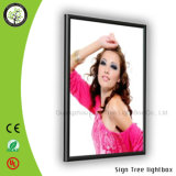 Custom Slim Aluminum Frame LED Light Box of Display