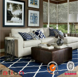 Da mão Shaggy acrílica do tapete do fio de 100% tapetes de área Tufted para a decoração Home
