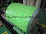 Bobinas del acero de Pre-Panited de la impresión de Shandong China