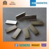고품질 N50m 네오디뮴 구획 자석
