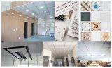 Панель PVC Китая для конструкции потолка и стены декоративной популярной