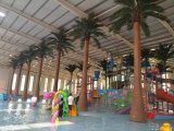 Het kunstmatige Grote OpenluchtGebruik van de Palm