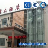 観光のエレベーターのパノラマ式の上昇の観察の上昇の観光の上昇