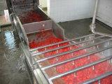 Máquina automática da lavagem do tomate