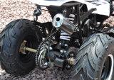 IL EEC EPA mette in mostra i capretti 49cc ATV