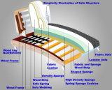 خشبيّة جلد أريكة لأنّ أثاث لازم بيتيّة ([د511])