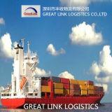 Serviço da logística do frete de mar (FCL/LCL) de Shenzhen/Guangzhou/Ningbo/Xiamen/Tianjing/Qingdao a Dallas, Tx dos EUA