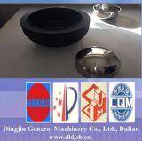 Estremità del tubo dell'acciaio inossidabile 304L (testa del piatto/testa emisferica/testa conica)