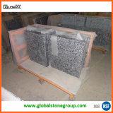 Countertops van het Graniet van China Witte voor Commercieel Project