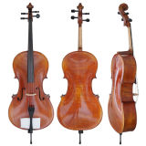 Master Level European Material Coulé Top Solid Solid Cello