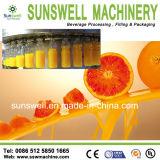 Volledige Lijn van de Gebottelde Installatie van de Verwerking van de Drank van /Hot van het Appelsap/Van het Vruchtesap