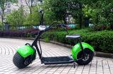 Самокат 2017 популярный 1000W Harley e для взрослого (JY-ES005)