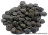 Помощь 5-Htp CAS сна отсутствие выдержки семени 56-69-9 Griffonia Simplicifolia