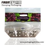 Chaoan Danqing Drucken-Frucht-Luftauslass-verpackenbeutel