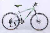 Изготовления Bike горы дороги углерода сразу дешевый (ly-a-43)