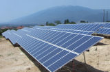 Alta calidad Low Price 250With260W Poly Solar Panel/Solar Module/PV Module/PV Panel para Solar System/Solar Farm