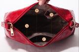 Signora alla moda Handbag di marca 2015 per 3PCS (XM001)