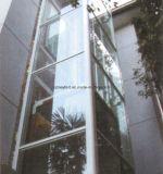 Роскошный домашний лифт с подъемом стеклянной стены