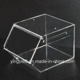 Cadre de mémoire acrylique clair de sucrerie