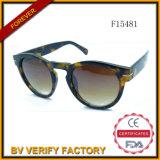 F15481 좋은 디자인을%s 가진 새로운 플라스틱 동향 색안경