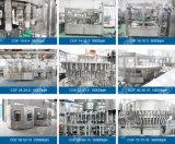 Estação de tratamento de água bebendo do frasco mineral do animal de estimação