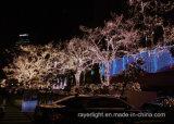 Decoración de Navidad al aire libre de la luz LED resistente al agua
