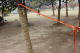 Ultra-Light kampierende Hängematte (Doppeltes) durch beweglicher Arbeitsweg-Fallschirm-doppelte kampierende Nylonhängematte China-Goodwin