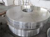 Tipos do anel do aço inoxidável do forjamento 316